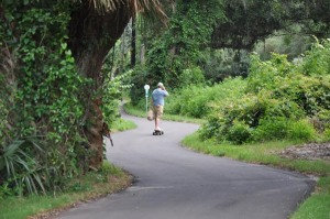 Using a different form of transportation, this skateboarder takes the long and winding road along the Amelia Island trail in Nassau County, Florida. Trails provide an alternate form of transportation while enhancing Florida's highway system.